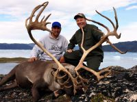 Reindeer in Greenland - Icelandic hunting club
